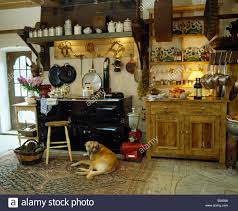 dog lying in front of black aga in country kitchen stock photo
