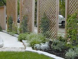 Backyard Screening Ideas Garden Privacy Screen Gardening Design