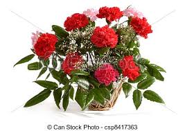 Red Carnations Stock Photos Of Basket With Red Carnations Basket With Bunch Of