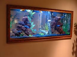 Frame Fish Tank Google Search Aquarium Project Pinterest - Home aquarium designs