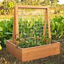 plant trellis for pots home u0026 garden compare prices at nextag