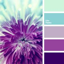 Purple Color Shades Best 25 Purple Color Combinations Ideas On Pinterest Purple