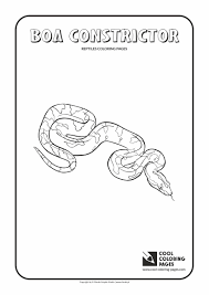 boa constrictor coloring page cool coloring pages
