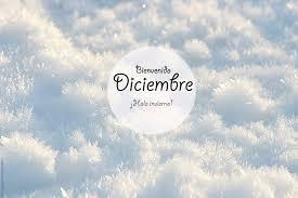 imagenes hola diciembre hola diciembre little dayda