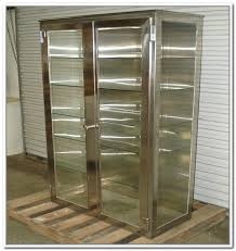 Cd Storage Cabinet With Doors by Cd Storage Cabinets With Glass Doors Home Design Ideas