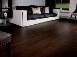 dark hardwood floors and dogs with dark hardwood floors and paint