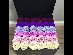 color roses color meanings choose the right color for your roses