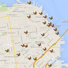 san francisco map downtown where can i see birds and butterflies in downtown san francisco