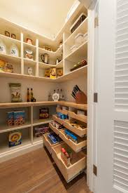 Kitchen Cabinets Pantry Ideas by Best 10 Built In Pantry Ideas On Pinterest Traditional Pantry