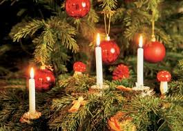 trees with candles search trees
