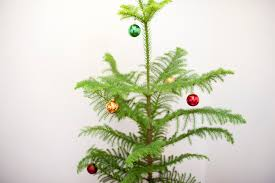 photo of simple christmas decorations on a tree free christmas