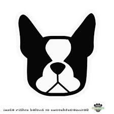 Boston Terrier Flag Boston Terrier Clipart Face Pencil And In Color Boston Terrier