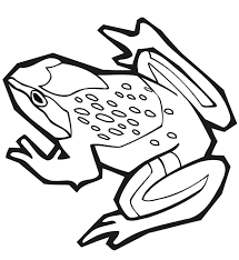 frog coloring page free animal coloring pages of pagestocoloring