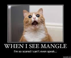 Fear Meme - fnaf meme 3 fear the mangle by kotor mstr on deviantart