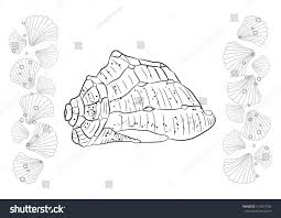 seashells hand draw coloring page seashell stock vector 613457546