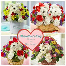 s day flowers gifts s day flowers for dog discounts and deals