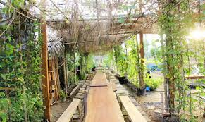 Family Garden - family garden nông trại cho bé địa điểm vui chơi cuối tuần
