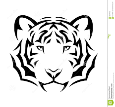 white tiger tribal design photos pictures and sketches