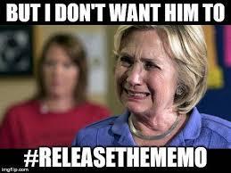 Meme Insider - a tsunami of releasethememo memes