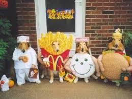Small Dog Halloween Costumes Ideas 19 Halloween Dog Costume Ideas Images Costume