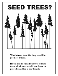scfc forest science 7 lesson 5