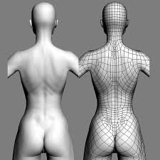 Female Body Reference For 3d Modelling 355 Best Topology Images On Pinterest Wireframe 3ds Max And