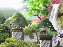 Beauty Garden by January 2010 Beauty Garden Wallpapers