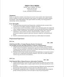 Resume Examples Finance by Finance Executive Free Resume Samples Blue Sky Resumes