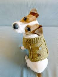 21 dogs in handmade sweaters cuter cutest from etsy