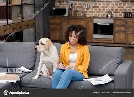 levrette sur canapé femme afro américaine travailler maison sur canapé tandis que