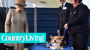 queen elizabeth and her royal corgis country living youtube