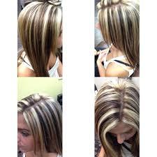 white hair with black lowlights dark brown hair with white blonde highlights brown hairs