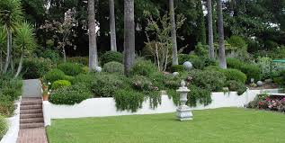 Small Shrubs For Front Yard - hillside landscaping how to landscape a slope landscaping network
