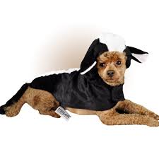 Extra Large Dog Halloween Costumes Otis Claude Dog Toys Entirelypets