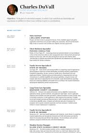 Example Of Sales Resume by Of Sales Analyst Resume