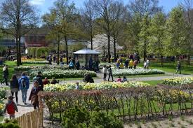 flower garden in amsterdam a day out at keukenhof with kids amsterdam mamas