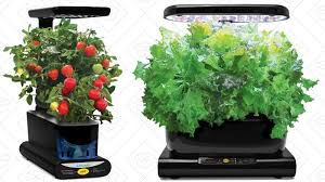 amazon aerogarden black friday grow herbs and vegetables indoors with discounted miracle gro