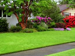 Cool Names For Houses Cool Yard Maintenance Companies For House Dd010 Home Inspiration