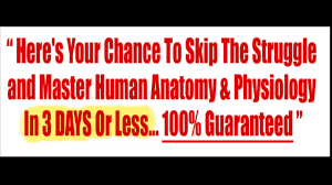 Anatomy And Physiology Dictionary Free Download Anatomy And Physiology Book Youtube