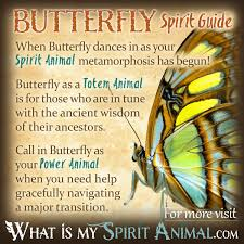 what u0027s the meaning of a blue butterfly and what does it signify