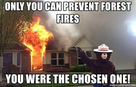 Only You Can Prevent Forest Fires Meme - only you can prevent forest fires you were the chosen one smokey