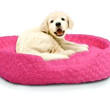 beds cute dog beds etsy dogs for small uk cute doggie beds cheap