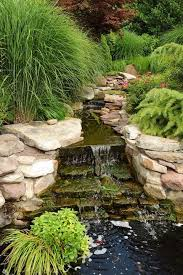 what do landscapers do 15 tasks landscapers say you should do in your yard every fall