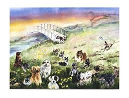 pet condolences rainbow bridge pet sympathy card for dog pet