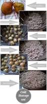 19 best root cellars images on pinterest food storage root