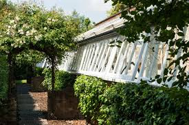 rescued from ruin a 19th century greenhouse becomes a modern
