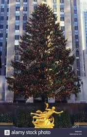 new york city nyc rockefeller center christmas tree lights