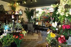 flower stores flower store flower stores flower store images flower store