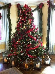 scotch pine christmas tree michigan christmas tree association about your tree