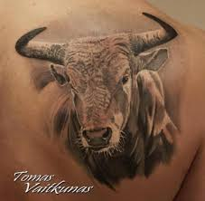 33 best bulls images on pinterest draw art work and military